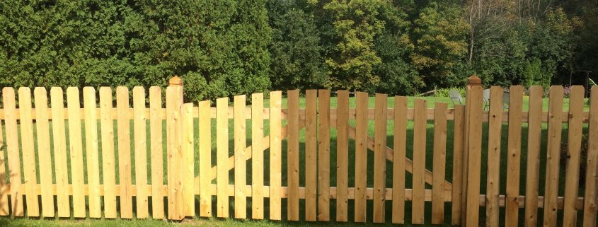 CEDAR SPACED DOG EAR WITH AN ARCHED DOUBLE DRIVE GATE